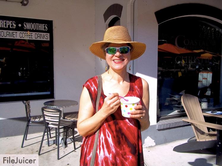 gorgous-st-pete-yogurt